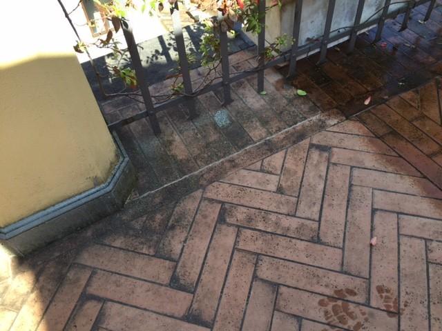 Terrazzo con pavimento in cotto toscano con incrostazioni biologiche.