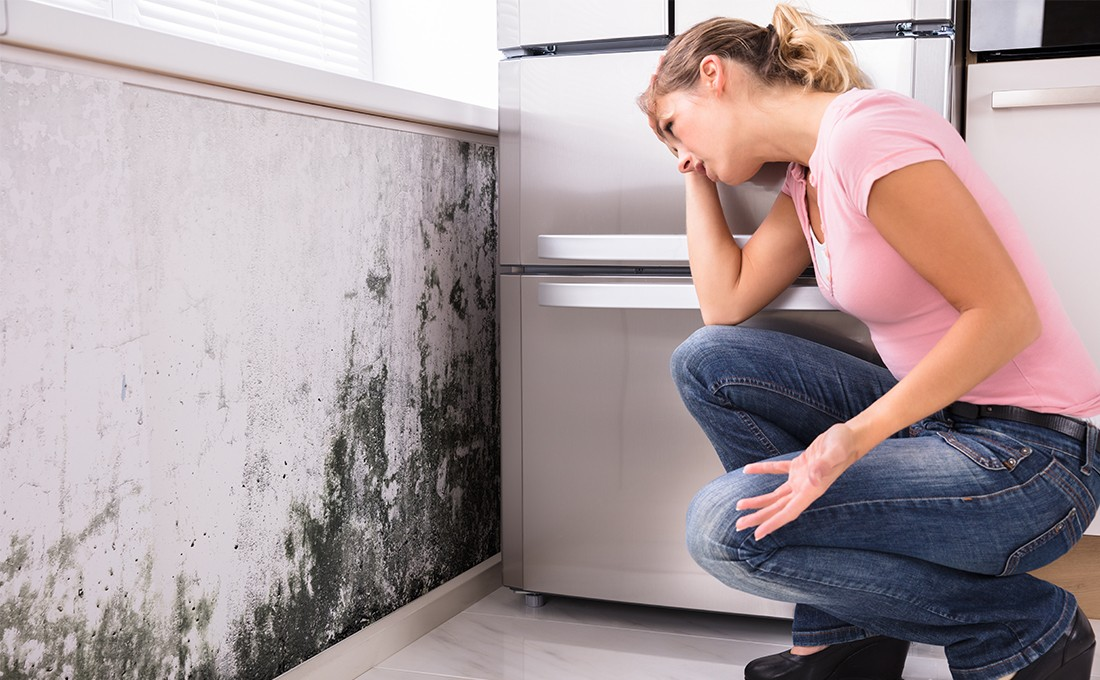 eliminate-mold-from-the-walls-permanently
